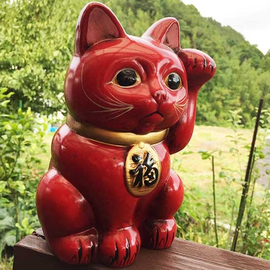 赤猫神社の赤い招き猫