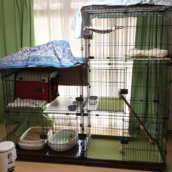 アイリスオーヤマのコンビネーションサークルで作った野良猫母子用ケージ