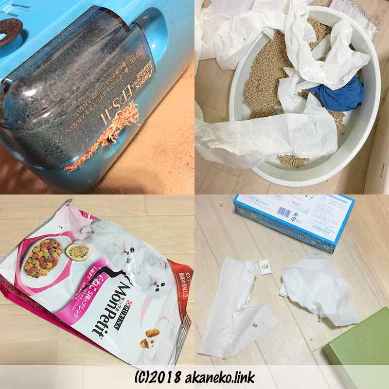 子猫のいたずらでひっくり返った鉛筆削り、猫トイレ、敗られたキャットフードの袋