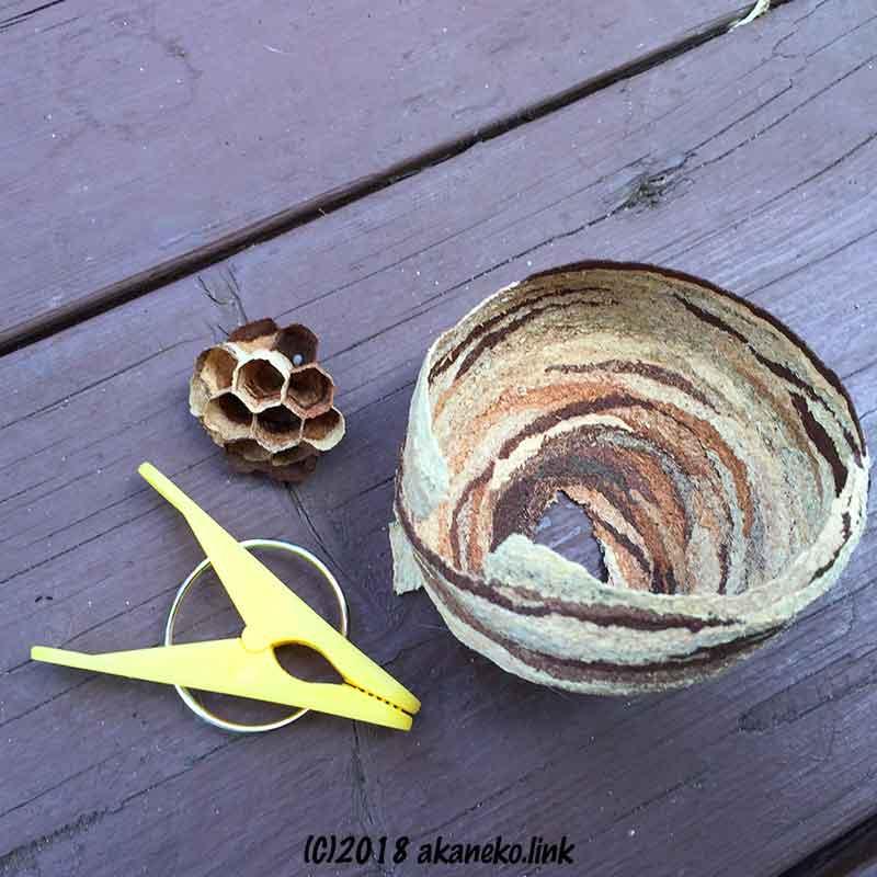 撤去したスズメバチの巣(初期)