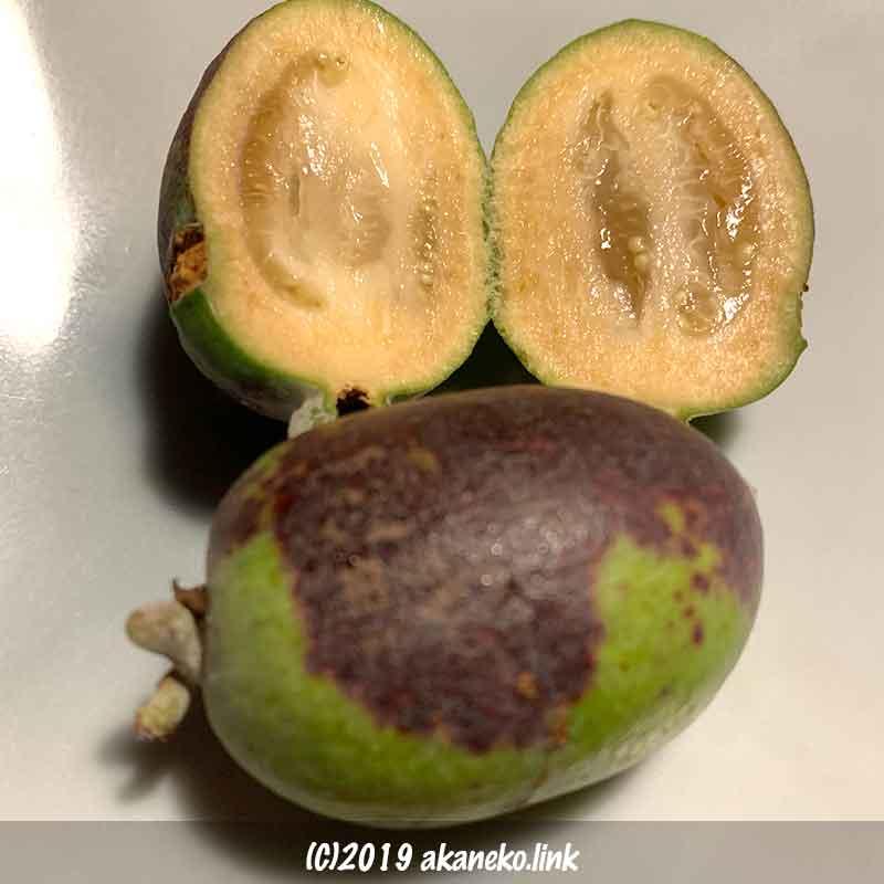 フェイジョア・アポロの果実