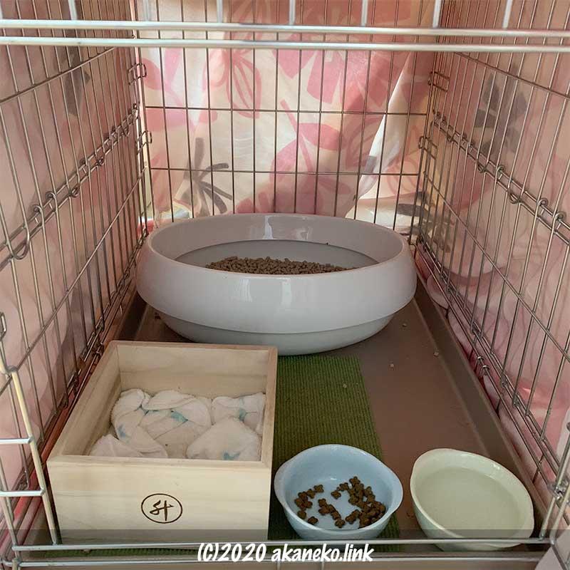 拾った子猫の部屋(ケージ)