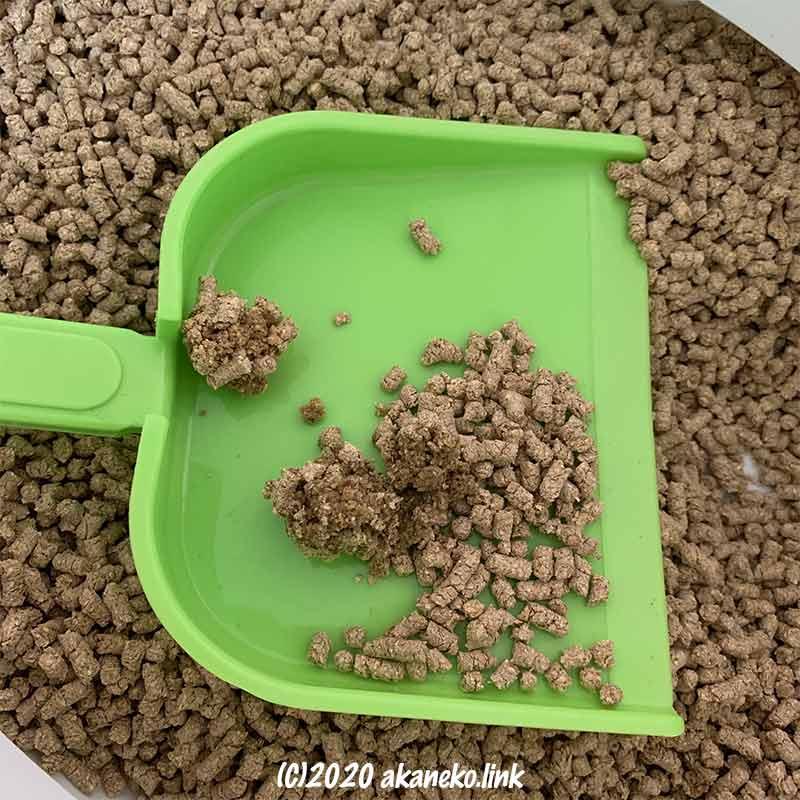 おしっこで固まった猫砂