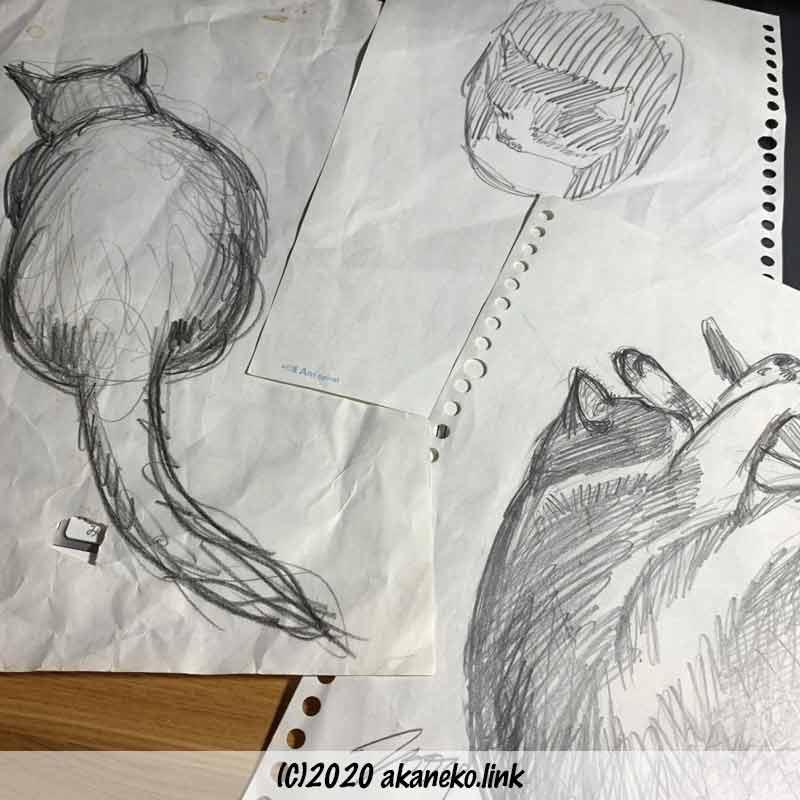 ノートに殴り書きした猫のスケッチ