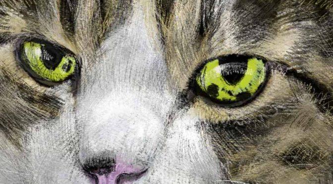 プロクリエイト(Procreate)で猫の絵:まずはエド君から