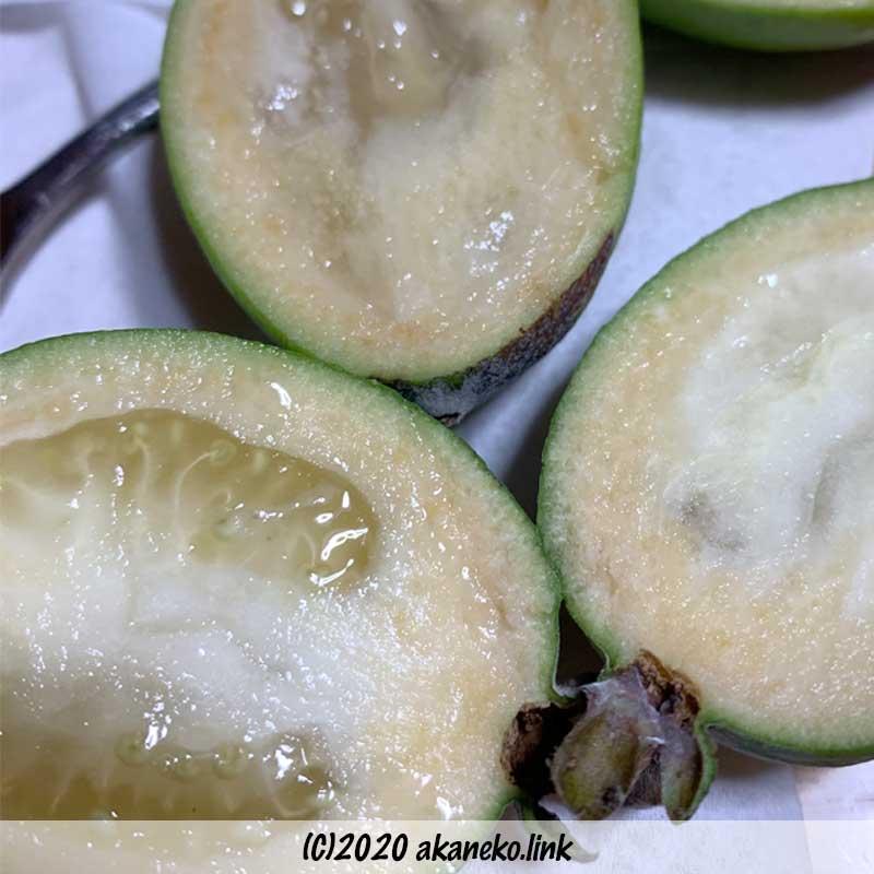 フェイジョア(アポロ)の果肉