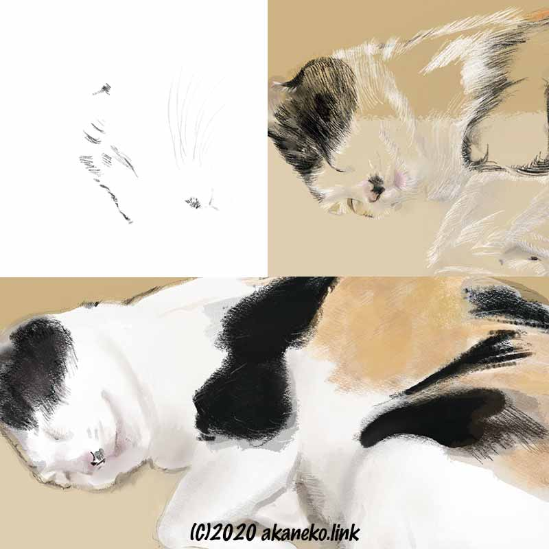 猫画レイヤー(Procreate画)