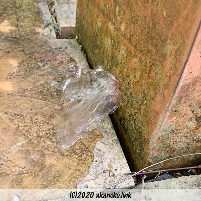 植木鉢の穴から吹き出る水