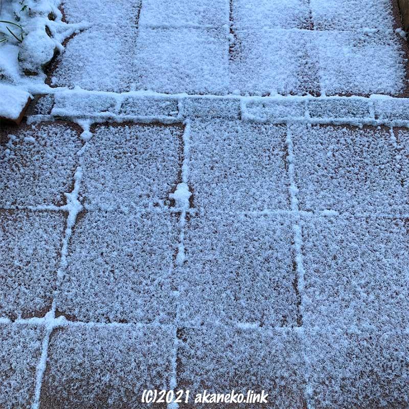 敷石にうっすらと雪が積もった