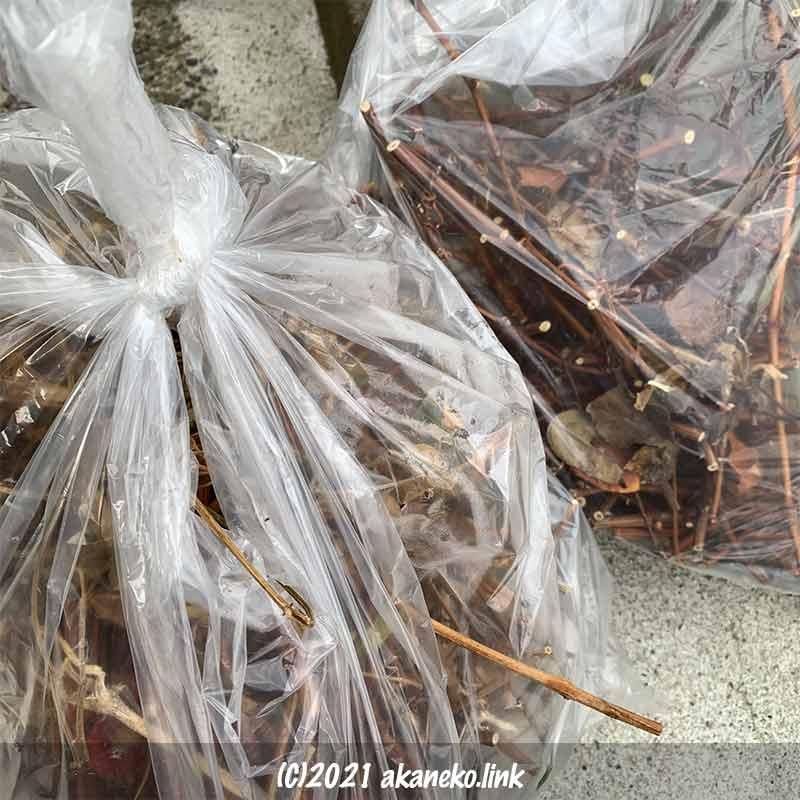 45リットルナイロン袋いっぱいの葡萄の剪定枝