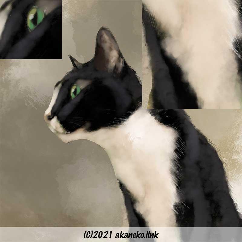 プロクリエイトで猫を描く:「塗り」レイヤー