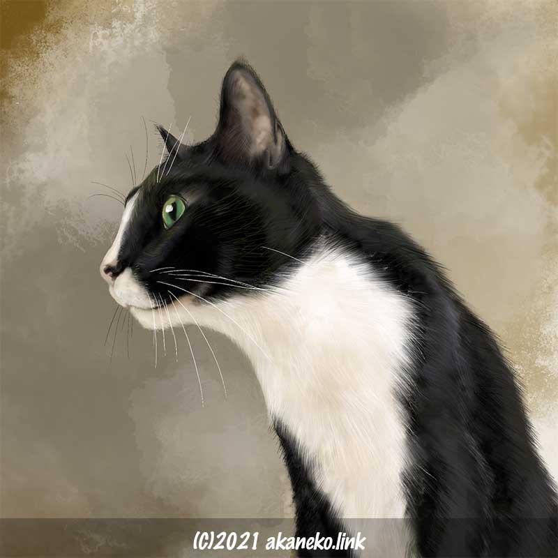 Procreateで描いた猫(ソックス)の絵