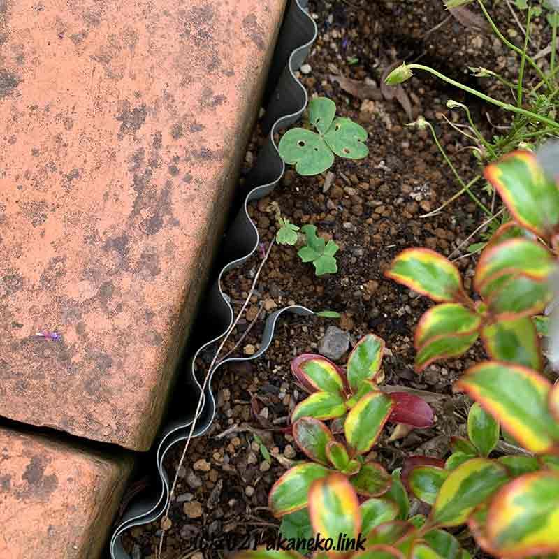 花壇の縁と波板トタンの隙間